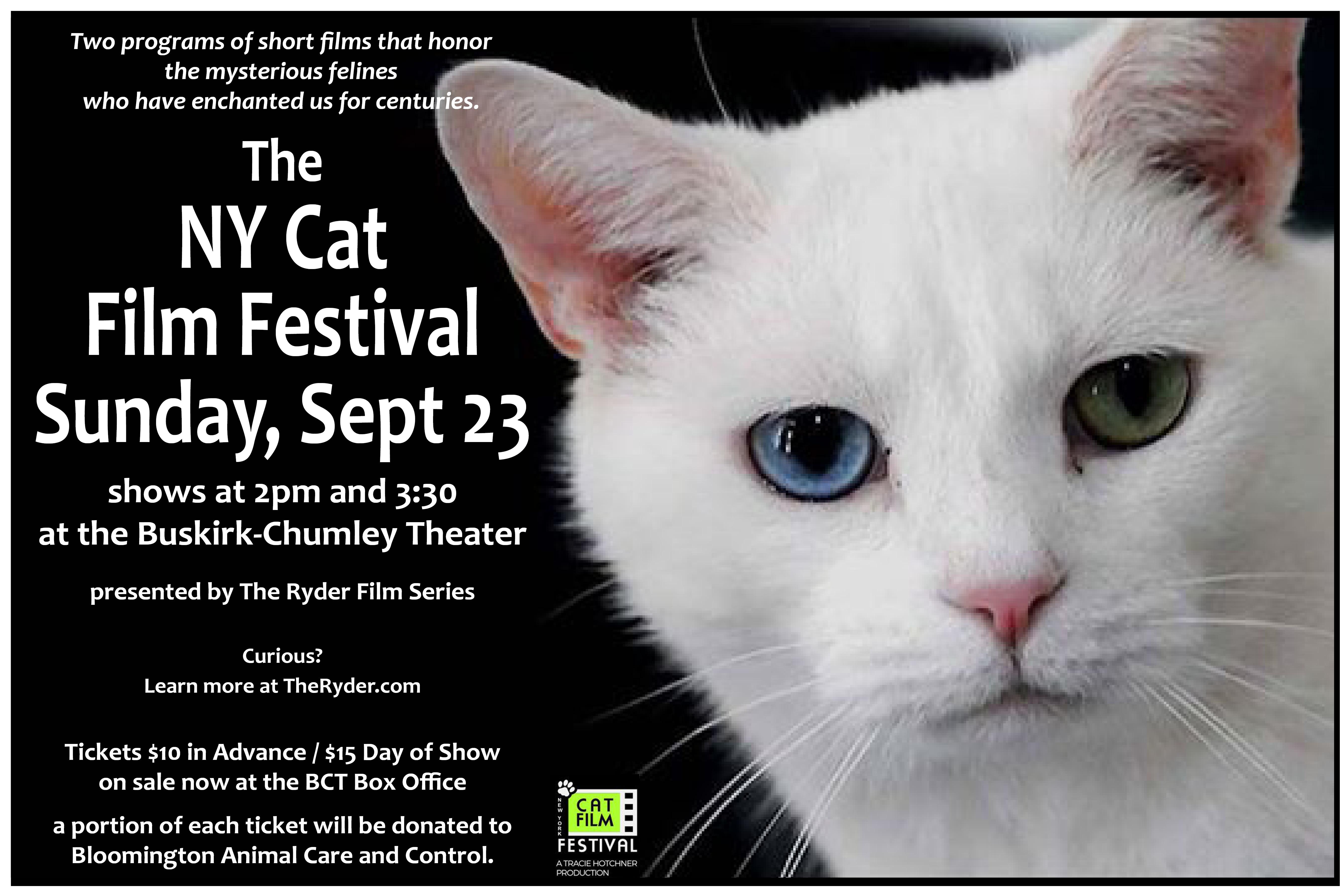 The Ny Cat Film Festival The Ryder